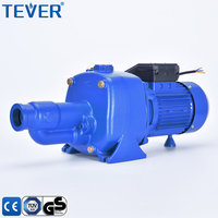 large flow high lift heavy duty twin brass impellers cast iron deep well self priming pump