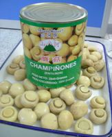 Hot selling canned mushroom and truffles