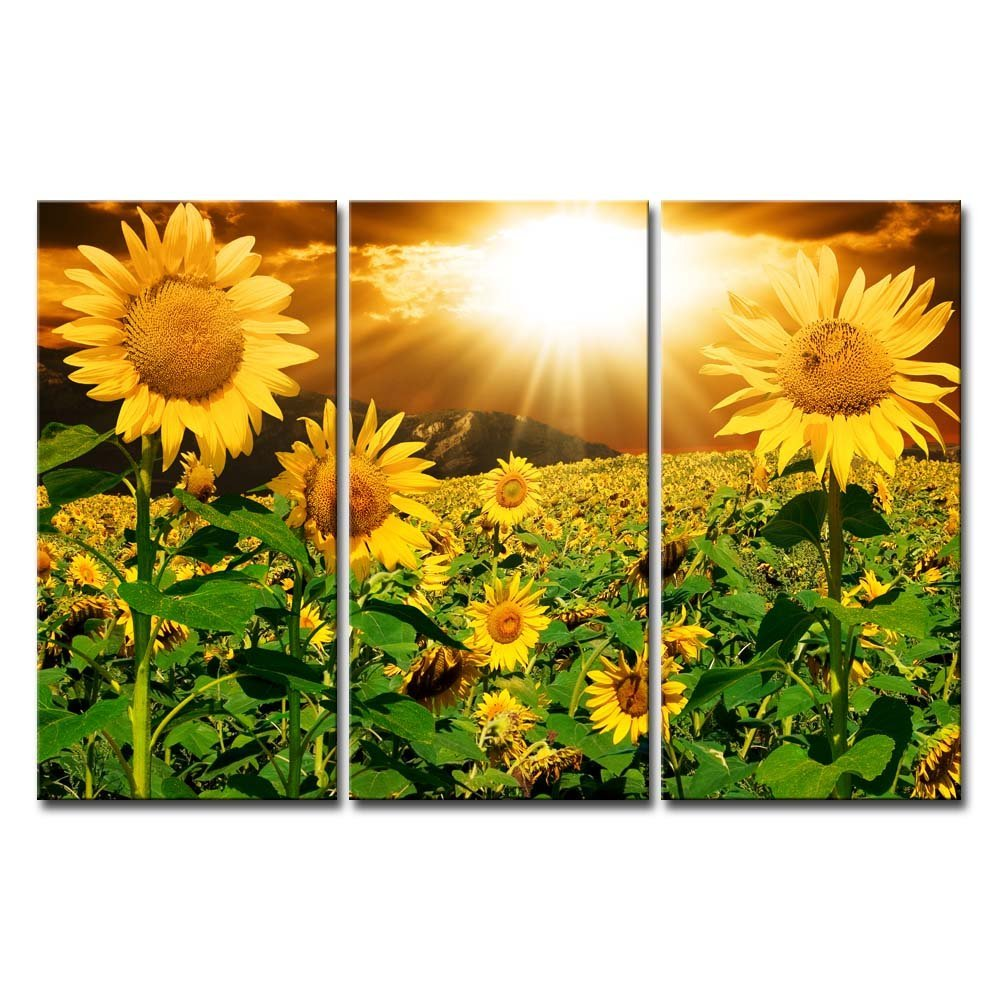 Buy large wall art canvas art Flower photo for picture free shipping ...