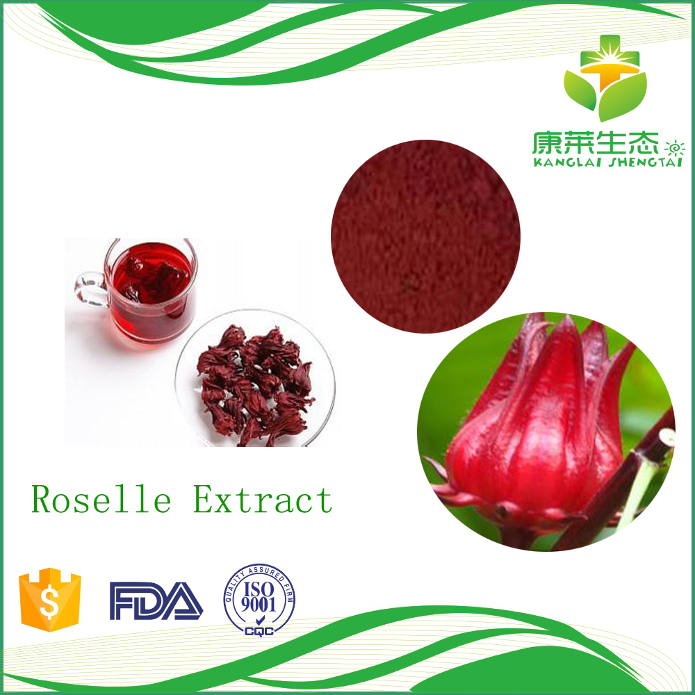 Herbal extract Hibiscus sabdariffa extract brownish red fine powder has fat reduction function