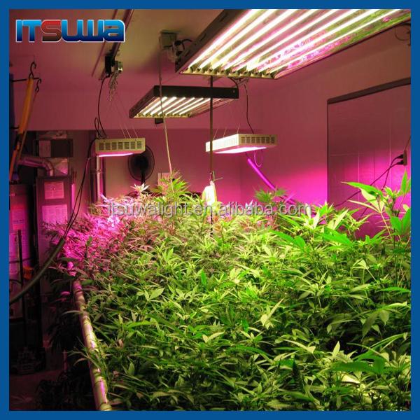 iluminaci n led led grow light chino semillas de