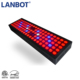 huizhou hydroponic led grow light Panel Grow Light Series,50W LED Plant Grow Light with Red Blue Spectrum for Growing&Flowering