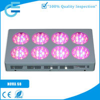 Evergrow Best price top rated 630nm red led for plant tissue culture led grow light 300w