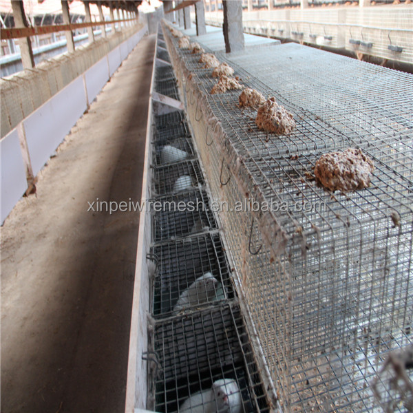 Professional hot dipped galvanized iron mink cage with wooden box(factory price)