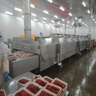 DJL high quality seafood iqf machine / industrial freezer
