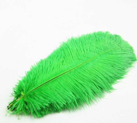 High quality different colours carnival ostrich feathers