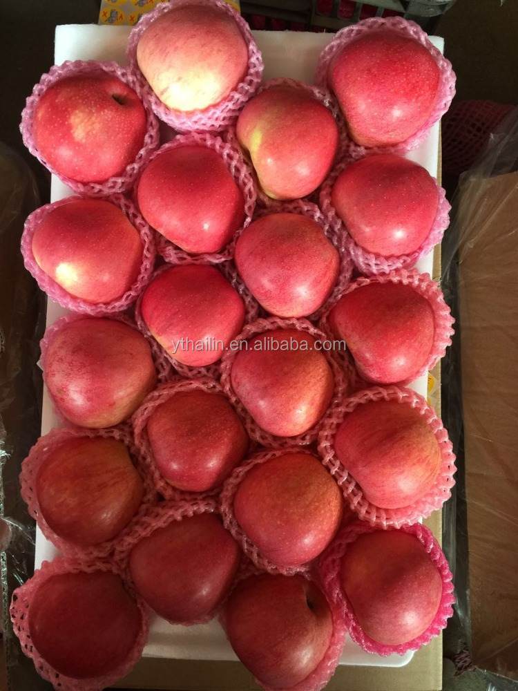 large quatity qinguan apple