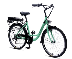 26'' Very Cheap Electric Bike CE En15194 Passed 2018 Electric Bicycle