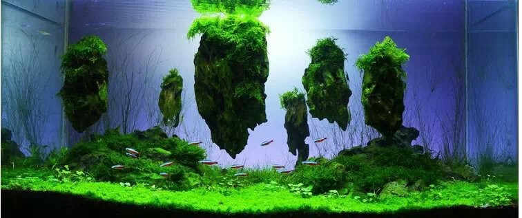 china fabrikant aquarium aquarium decoratie rots aquaria en accessoires product ID 60240494505