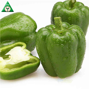 Kingshire California Wonder Sweet Pepper Capsicum Seed