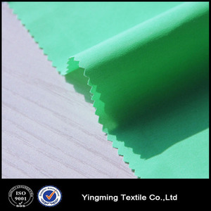 228T dull Nylon Taslan/Taslon Fabric With Quick Dry Function