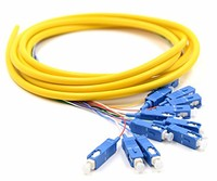 12 core colorful Fiber Optic SC FC ST LC Breakout Pigtail wtih 0.9 mm fiber cable