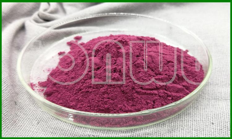 Natural cranberry juice powder cranberry powder