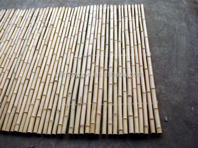 bamb de bamb para edificios