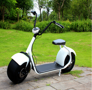 Factory directly Promotion e scooter scrooser 2 Wheels 2 seats adult electric scooter with EEC certificate