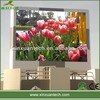 popular wholesale price p20 outdoor advertising led display screen