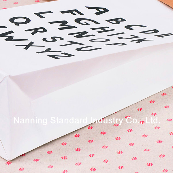 Northern Europe Le Sac Paper Bag paperbag Bloomingville the Paper Bag, View  Le Sac Paper Bag, standard Product Details from Nanning Standard Industry
