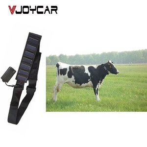 T5010S best free tracking software long standby 10000mah waterproof solar  collar cow cattle horse camel gps tracker for animal