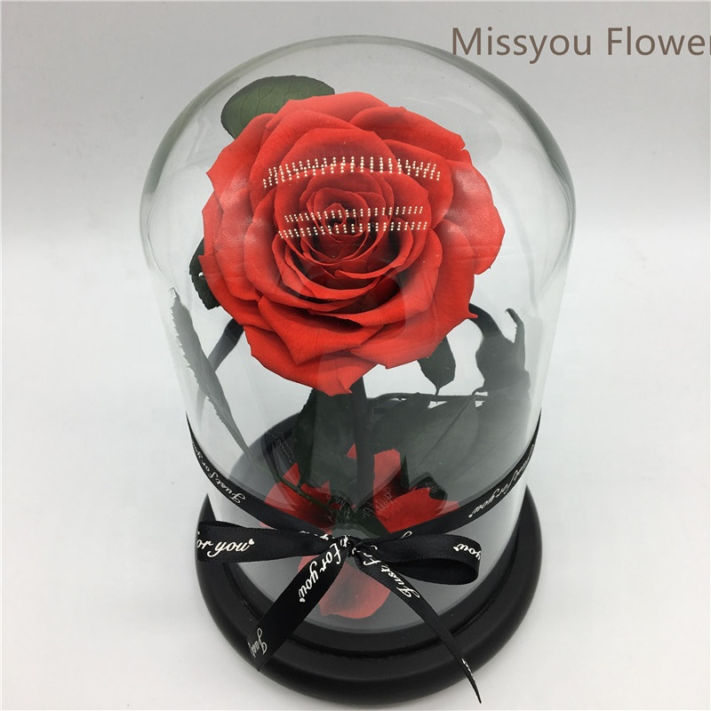 Home decoratie groothandel hot koop geconserveerde rozen in dome glas factory supply infinity rose