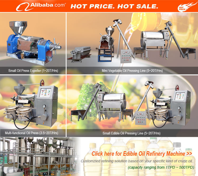 Efficient vegetable oil extraction plant palm kernel corn germ coconut oil processing machine