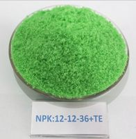 Powder 100 Water Soluble Fertilizer NPK 19-19-19 Fertilizer Price for Agriculture
