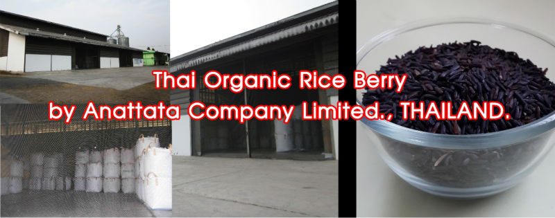 Thai Organic Rice Berry