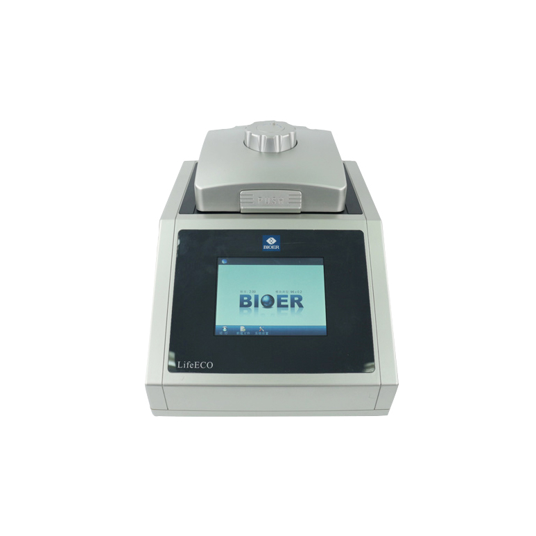 Life ECO PCR PCR equipment Machine Multigene Optimax Thermal Cycler