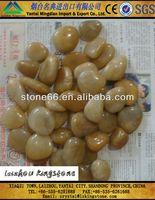 Excellent superb yellowful pebble stone for decorative aquarium fish