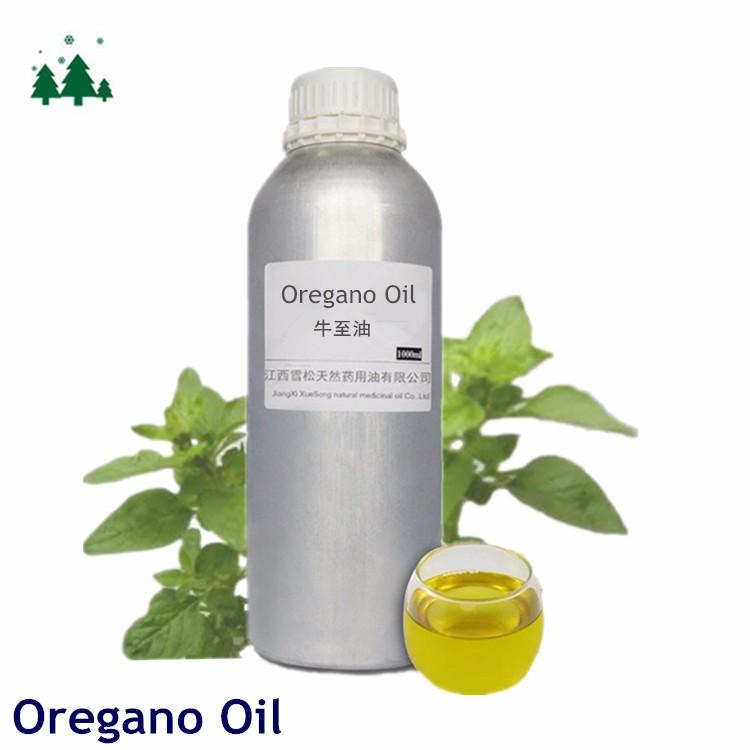 steam oregano oil product method 100 natural oil hot sale