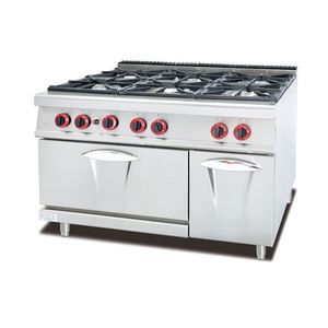 Commercial Gas Stove Double Burner for Cooking in Using Biogas