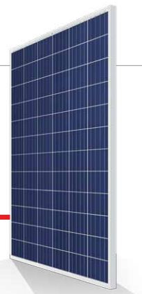 poly 305W 310W 315w Trinasolar SOLAR PANEL 72 Cell with full certificate