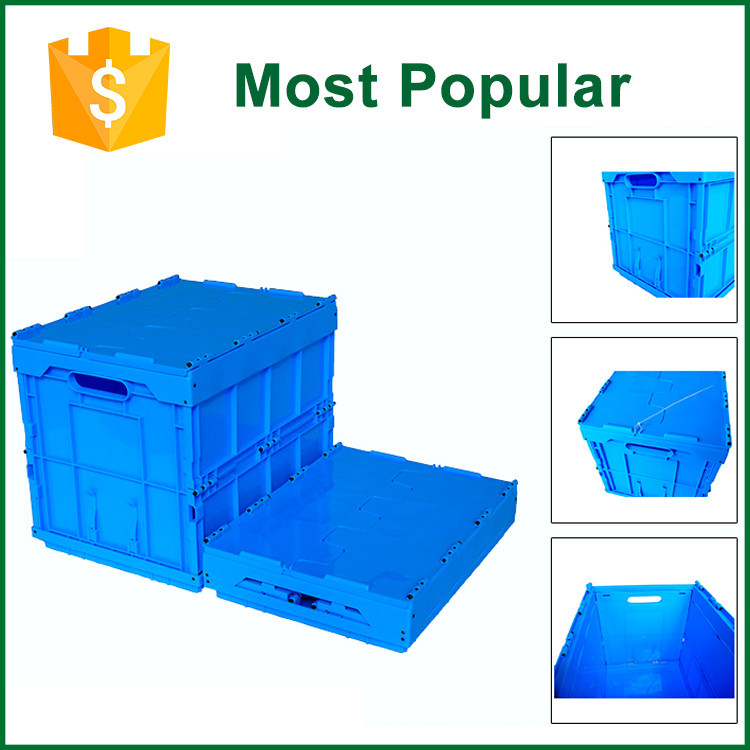 Professional Foldable Plastic Contianer Box/Storage Bins