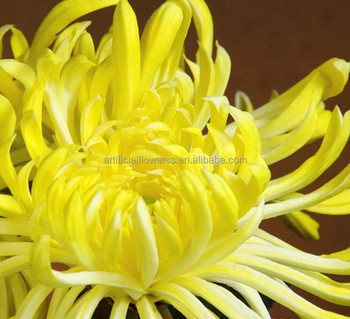 Artificial latex big real touch yellow chrysanthemum flowers buy artificial latex big real touch yellow chrysanthemum flowers mightylinksfo