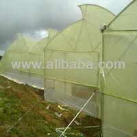 Naturally Ventilated Green House