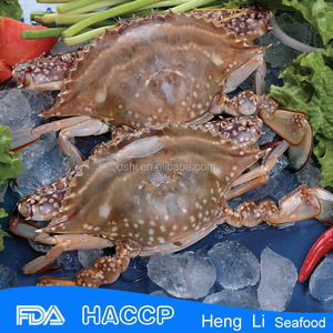 HL003 New season seafood crab farm