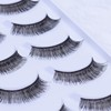 Chinese Wholesale Fashion False Eyelash with Glue