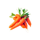 New Crop Fresh Chinese Red Carrot