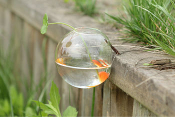 Semi-circle Wall Mount Glass Vase For Hydroponics Flower,Fish Tank ...