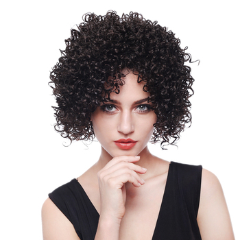 Short Curly Wigs For Black And White Women,