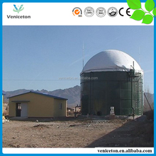 Veniceton cheap price good delivery time biogas/biogas plant/biogas digester machine small biogas plant