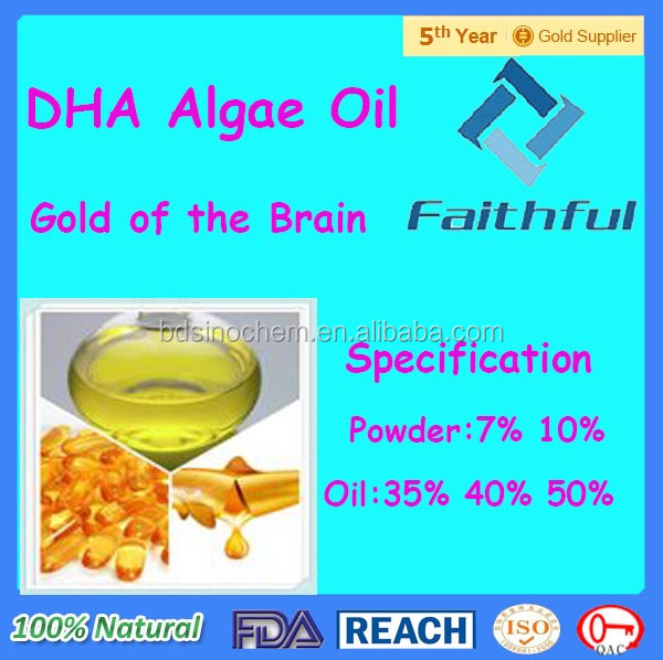 High Qulity DHA Oil with Food Grade