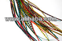 Skinny mixed bright Grizzly Rooster feathers