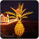 LED outdoor palm tree lights