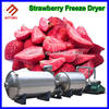 High Quality microwave vacuum fruits dryer