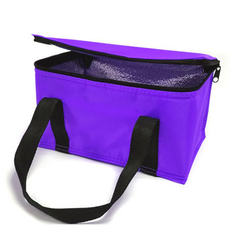 Picnic Insulated Lunch Bag Cooler Freezer