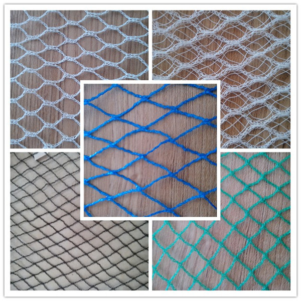 Plastic Mesh Hdpe Knitted Vinyard Anti Bird Protection Net