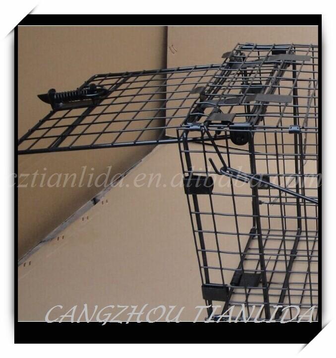 Live Feral Dog Cage Trap/live Coyote Cage Trap/wild Animal Cage ...