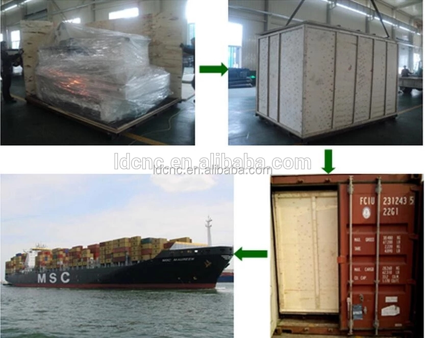shipment 2.webp