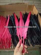 25-30cm Goose-long feathers/Turkey quill