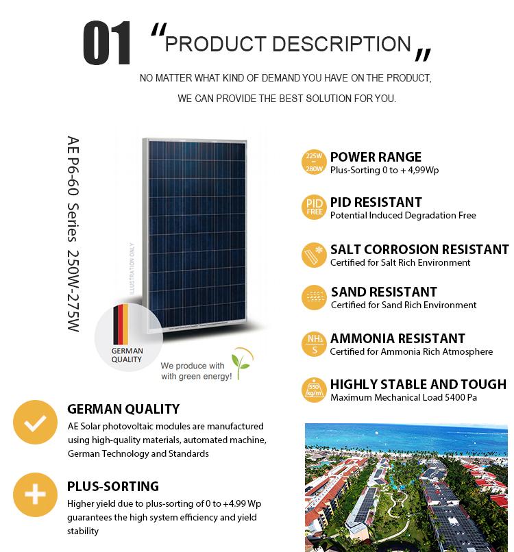 Ae Solar 290w German Quality Mono Solar Module Wholesale
